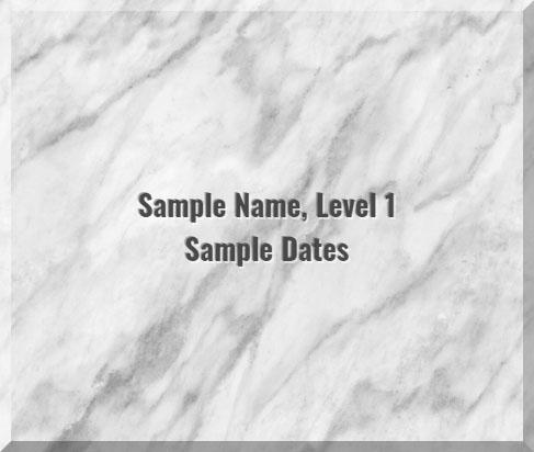 Sample image of Level 1 tile