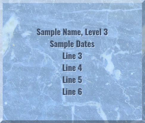Sample image of Level 3 tile