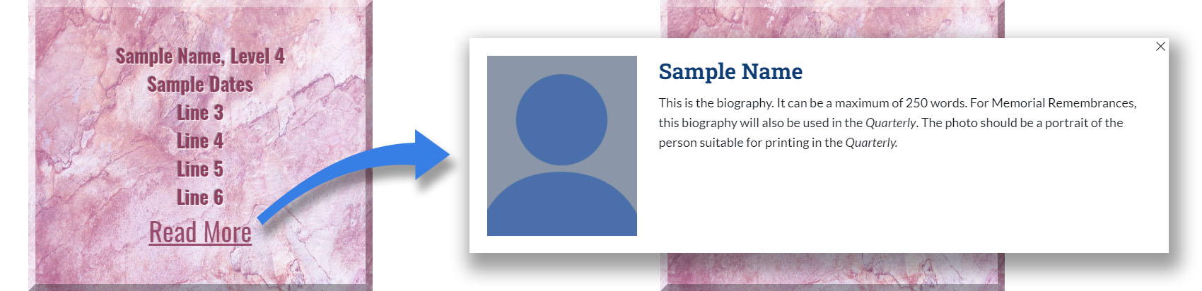 Sample of Level 4 tile with photo and biography